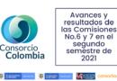 Avances y resultados de las Comisiones No.6 y 7 en el segundo semestre de 2021